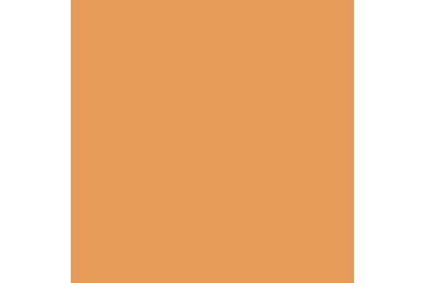 KRONOSPAN Spaanplaat Gemelamineerd Color 0551 Peach BS - Bureau Structure PEFC 2800x2070x18mm