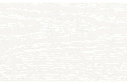 florence plafondpaneel acera 250x10x4500