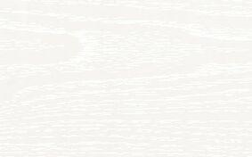 florence plafondpaneel acera 250x10x6000