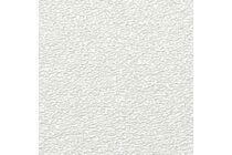 AGNES One-Step Plafondpaneel 14TF TG4 Fijn Wit PEFC 1220x620x12mm