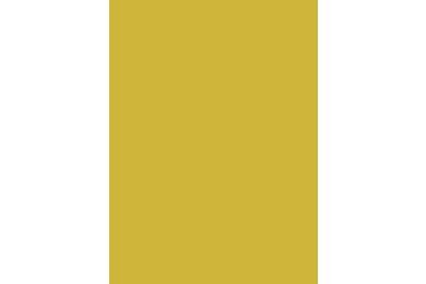 SKIN HPL U5459 Giallo Erice Cedro 3050x1310x0,8mm