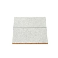 Agnes One-Step Plafondpaneel 02TF Wit 1220x620x12mm