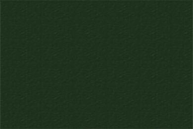 TRESPA Meteon Satin A34.8.1 Forest Green Dubbelzijdig 3050x1530x10mm