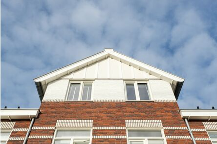 unipanel bouwpaneel 3415 wit 16x235x2900mm