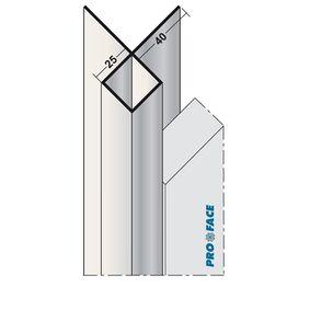 proface buitenhoek aluminium geanodiseerd 3000mm