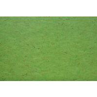 OSB Color Green U2/U2 18mm 250x125cm 70% PEFC