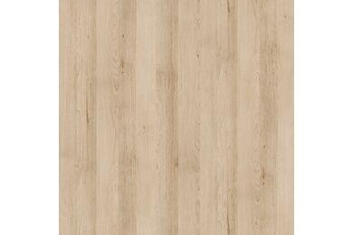 ABS Kantenband K013 (HD 21013) 2x22 50m1