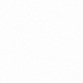 florence plafondpaneel brillante 250x10x4500